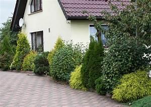 Kleine Bäume Für Vorgarten : geeignete koniferen f r den garten ~ Michelbontemps.com Haus und Dekorationen