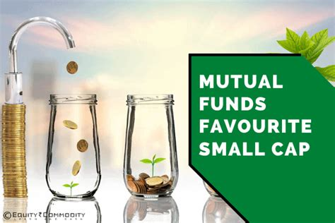 mutual funds favourite small cap mutual funds holding