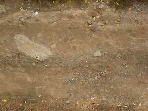 dirt road with stones 0031 - Texturelib