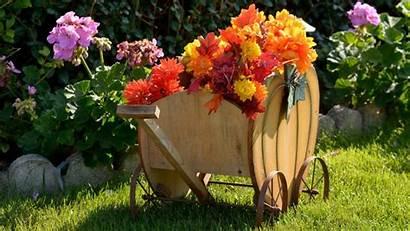 Desktop Harvest Fall Autumn Scene Screensavers Scenes