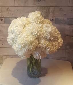 White Hydrangea Vase in Middletown, CT | Amberworks Floral ...