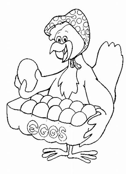 Coloring Chicken Pages Eggs Chickens Sheet Clipart