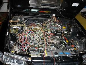 E60 Bentley Wiring Harness