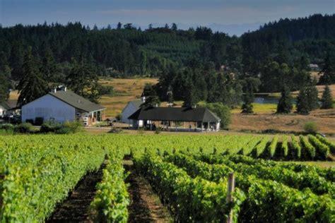 Q & A: Summer Barrel Tasting at San Juan Vineyards
