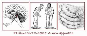 Neuroscience Fundamentals - Parkinson's Disease - a new ...