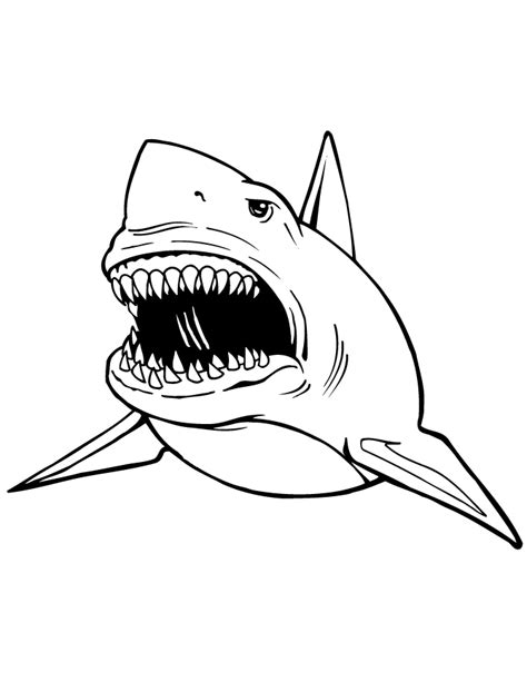 shark coloring pages getcoloringpagescom