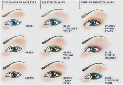 Anatomie de l'oeil le globe oculaire