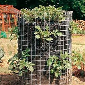Période Pour Planter Les Pommes De Terre : plantation de la pomme de terre ~ Melissatoandfro.com Idées de Décoration