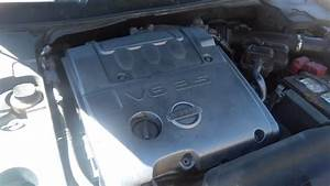2004 Nissan Maxima Ticking Sound Lifters Or Timing Chain