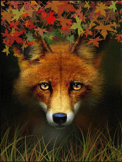 leaf fox painting by robert foster
