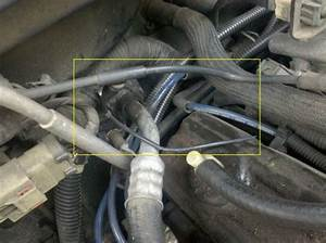 Vacuum Leak Under Hood