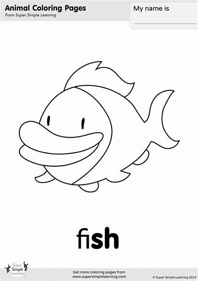 Coloring Fish Pages Yes Flashcards Simple Animal