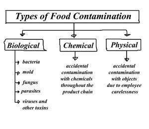 unterschiedliche kontaminationen ursachen und praevention