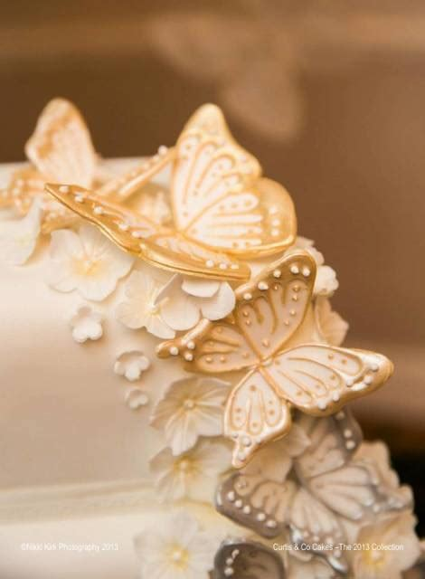 Help With Butterflies Cakesdecor
