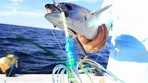 Fishing - 2 Lure