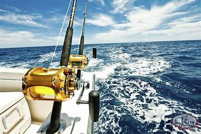 Fish Sport Wallpaperaccess Offshore Fishing Wallpapers