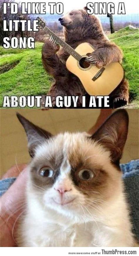 Funny Grumpy Cat Song Memes