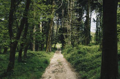 nature trail  travessa  montejunto portugal image