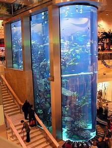 11  Incredible Aquarium Designs That You Can Try To Make