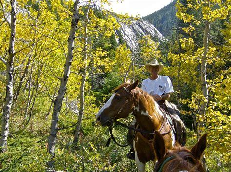 equestrian riding kananaskis horseback hand