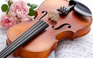 Violin Wallpapers Free Download gallery - Hot HD ...