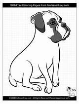 Coloring Boxer Dog Dogs Breeds Breed Animal Soon Being sketch template