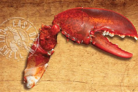 myseafoodcom scored claws  arms frozen