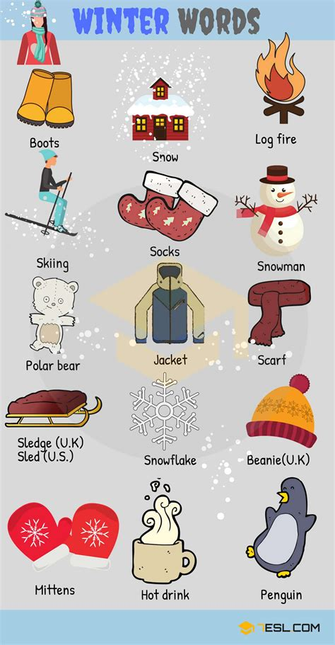 winter words  winter vocabulary  pictures