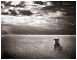 Plaid Noir Et Blanc : l 39 afrique en noir et blanc le blog de radiblog ~ Dailycaller-alerts.com Idées de Décoration