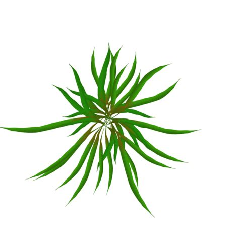 They are one of many reasons that make svg. Free Animated Pictures Of Plants, Download Free Clip Art ...