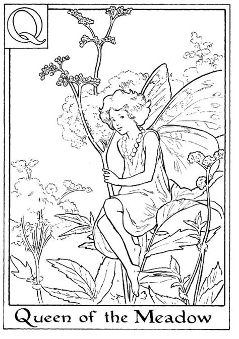 fairy coloring pages meadow flowers  flower fairies  pinterest