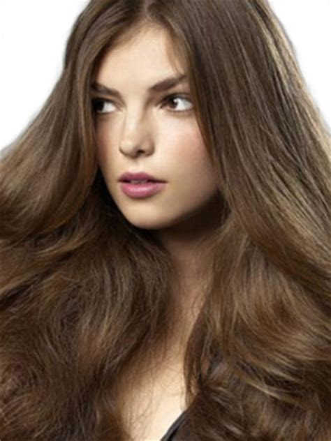Brown Hair Facts by 10 Facts About Brown Hair Fact File