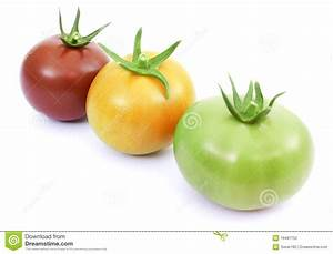 Tomatoes Red, Yellow And Green Stock Photography - Image ...