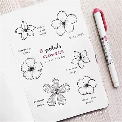 Bullet Journal Aesthetic Flowers Doodles Paper Flower