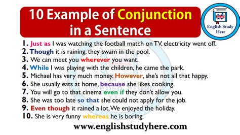 10 Example Of Conjunction In A Sentence  English Study Here