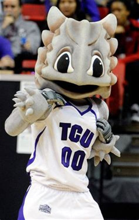 images  tcu horned frogs  pinterest frogs