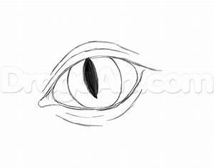 How to Draw and Color Dragon Eyes, Step by Step, Dragons ...
