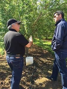 April | 2015 | Agricultural Council of California