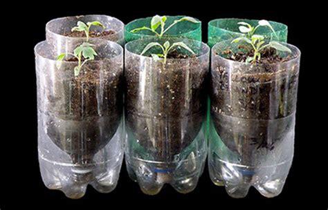 reusing plastic bottles  favorite ways ecofriendlylink