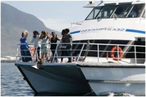 Boat Cruise From Cape Town by Wedding Boat Venue Cruises Cape Town Atlantic Seaboard