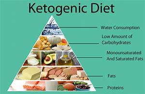 Guide On Ketogenic Diet Weight Loss