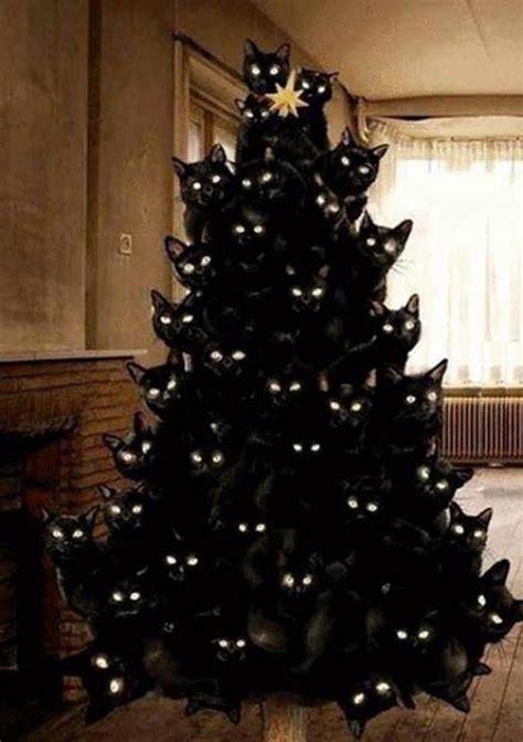 tree christmas cat crazy cats lady meme funny trees xmas halloween hilarious quotes cute chrismas random previous