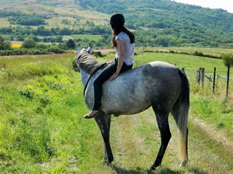 monter comme un cheval quot j ai cru enfant que pour aimer les chevaux il fallait les