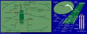 Diagram Of Cricket Field