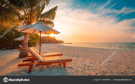 chaise longue plage fond de la plage paysage de plage sc ne de nature