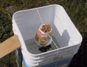 Water Bucket Mouse Trap