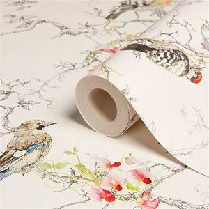 The 25 Best Bird Wallpaper Ideas On Pinterest Bird ...