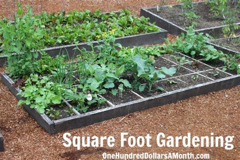 square foot garden design ideas home garden design