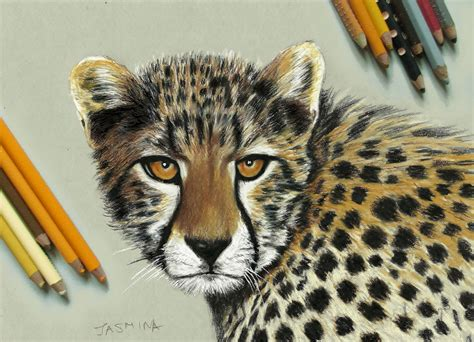 Realistic Drawings And Paintings Of Animals By Jasmina