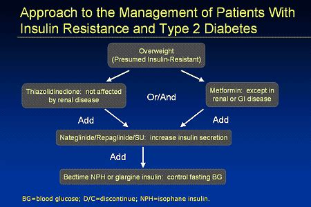 type  diabetes treatment insulin atkins  carb diet